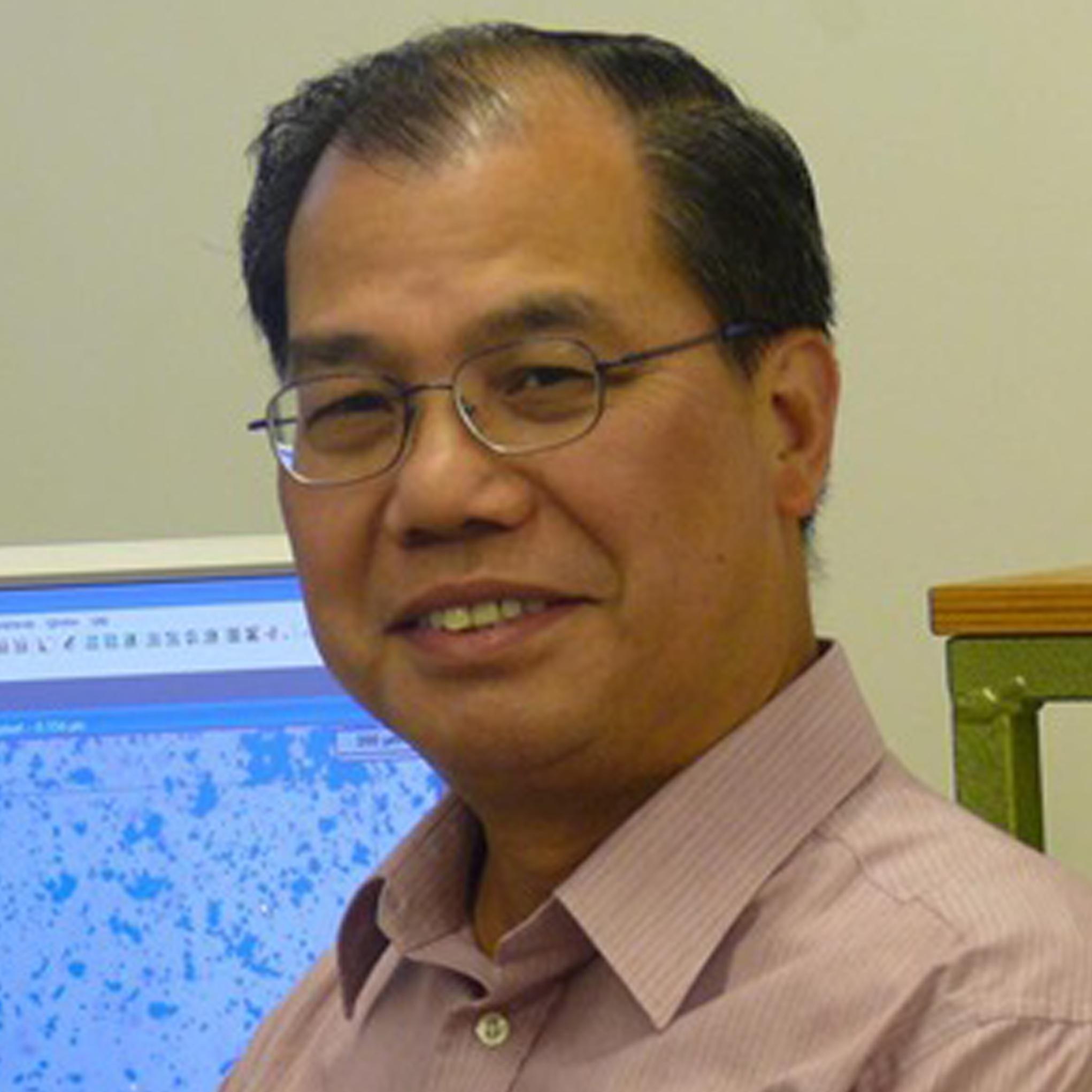 Professor Yiu-Wing Mai