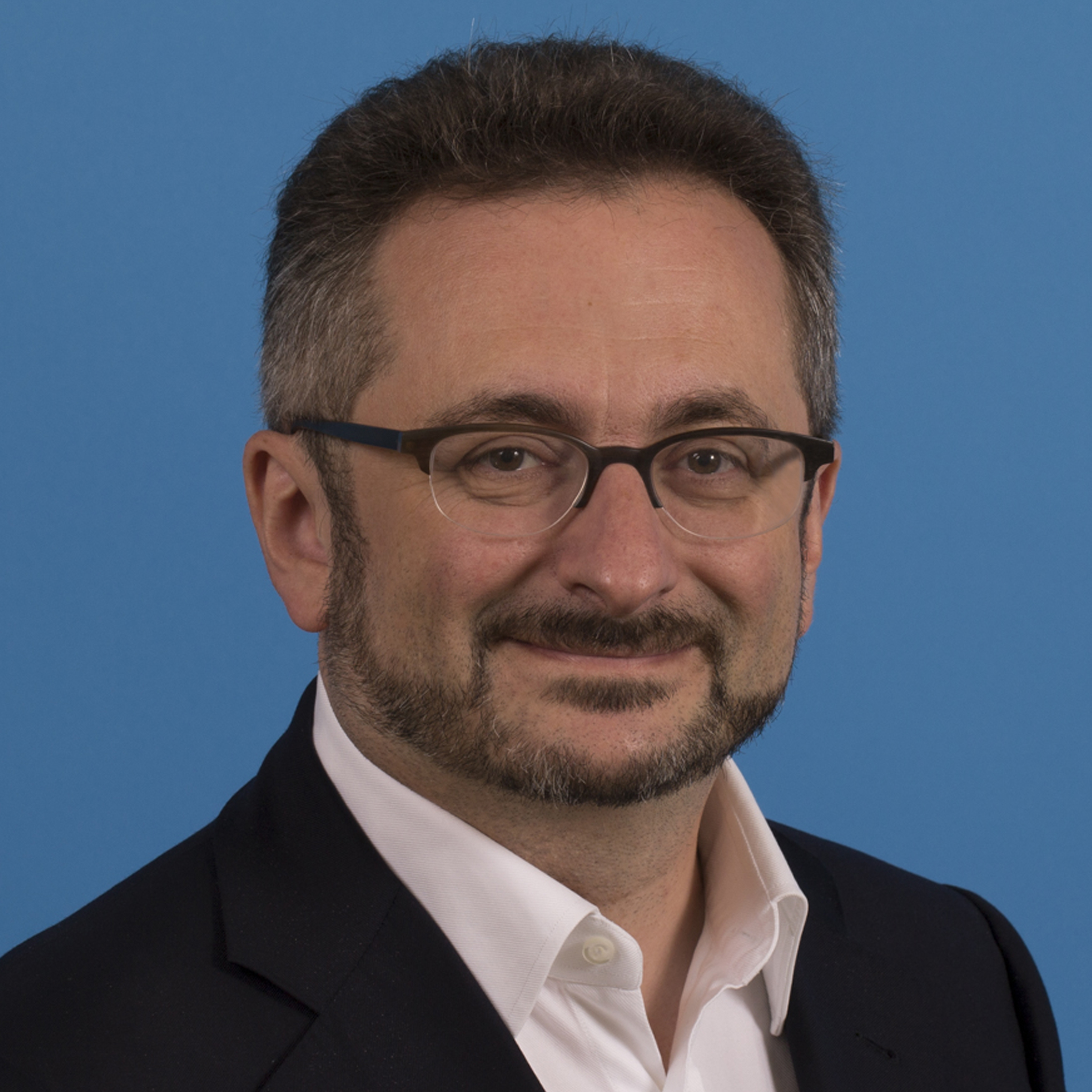 Professor Alexander Puzrin